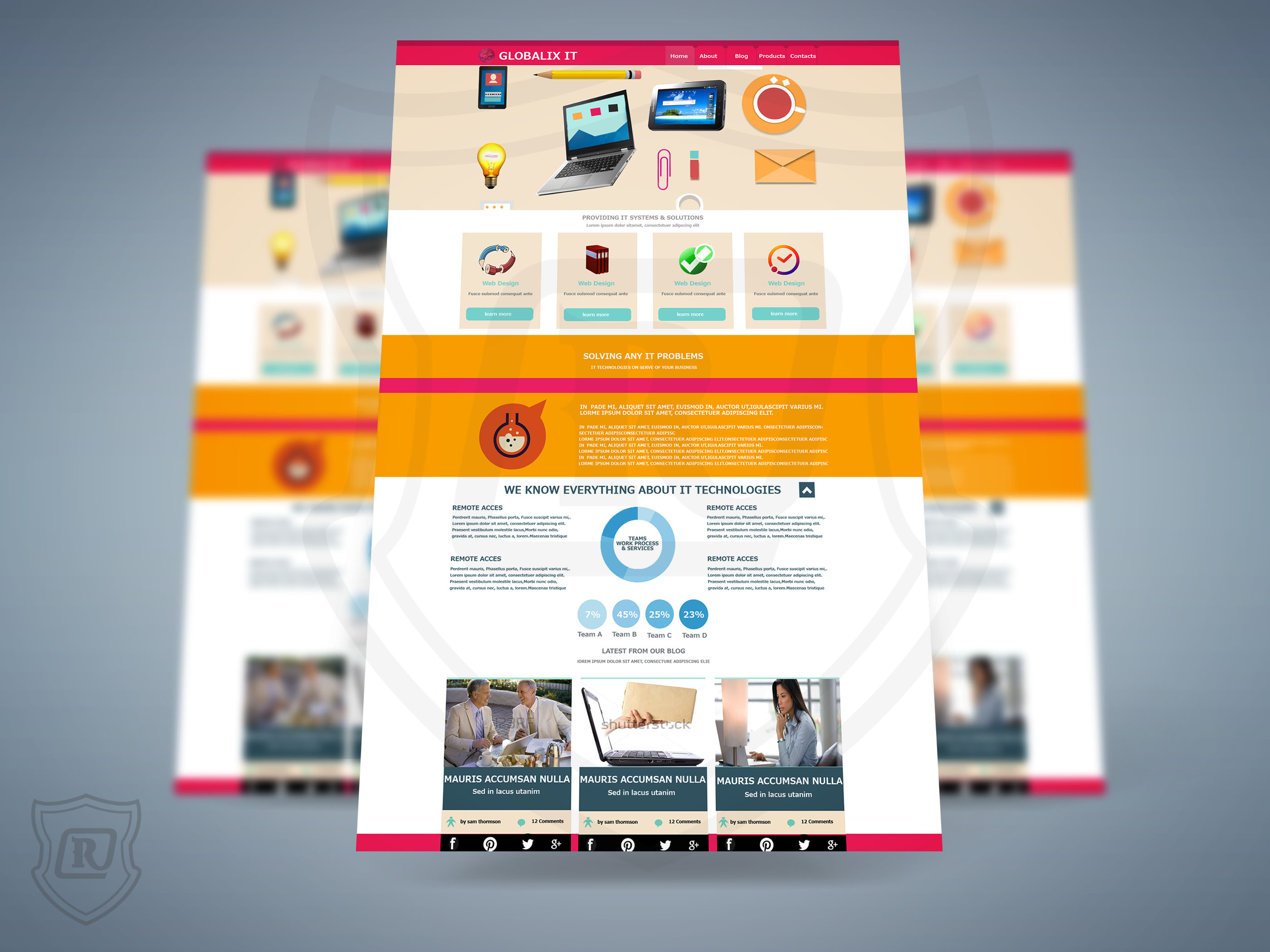 web design17